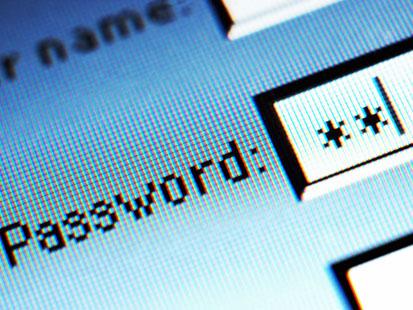 Password input window